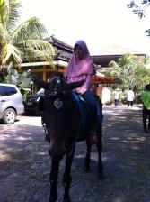 Kalila dan kuda
