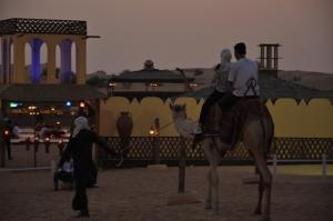Safari Dinner Dubai